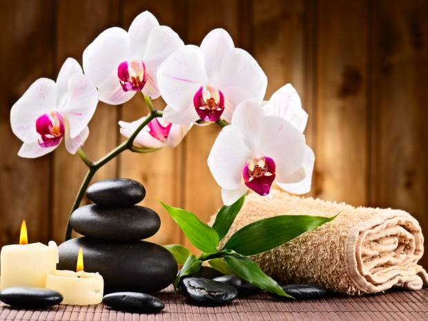 Book a massage with cindy 39 s spa lancaster pa 17603 for 717 salon lancaster pa